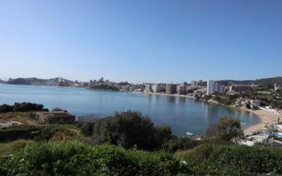La qualité des relations humaines me retient en Algérie