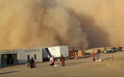 Henri Teissier, témoignage: je me retrouvai dans les camps sahraouis